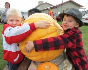 Impressed with the size of one of the pumpkins on show at the Roxburgh and Districts Lions Club's Pumpkin Festival at the Roxburgh racecourse yesterday are George Landstrom-Barr (6, left), of Ettrick, and Kees Richards (8), of Roxburgh. Photo: Yvonne O'Ha