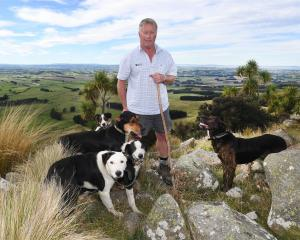 Warepa Collie Club member Robin McKenzie and his dogs Kip, Slade, Dice, Paul and Ralph overlook the club's grounds in South Otago. Photo: Stephen Jaquiery.