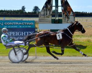 Eamon Maguire reunites with driver Dexter Dunn for his tilt at tomorrow's  Southern Supremacy...
