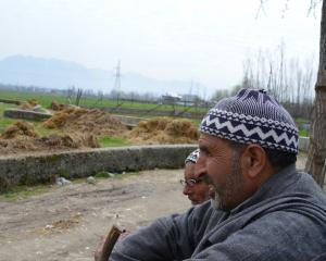 Agricultural land is being converted to housing in Pandach-Ganderbal, near Srinagar. Photo: Reuters