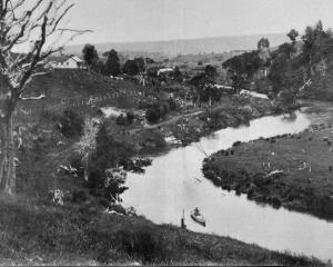 A scene on the Owaka River, looking south. - Otago Witness, 25.4.1917.