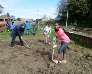 Student volunteers from UniCrew turn over soil at the Rosina Wiparata Memorial Gardens, Brockville. Foreground (from left) Andrew Martin, Sandy Tran and Dona Joseph. PHOTO:LINDA ROBERTSON
