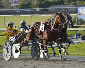 New Zealand Oaks contender Bonnie Joan heads a strong book of drives Dexter Dunn has on tonight's...