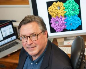 Professor Kurt Krause, director of the Webster Centre for Infectious Diseases, at the University...
