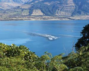 Slick formations, driven by specific wind conditions, formed on the surface of Lake Wakatipu...