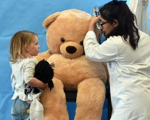 University of Otago third-year medical student Niah Khan checks out a bear's condition under the...
