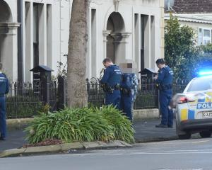 Police interview people in George St after a series of nuisance fires in Dunedin's north end yesterday. Photo: Gregor Richardson