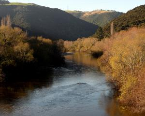"Federated Farmers say much of the water quality debate is ""dominated by emotive slogans and assumptions based on skinny data, patchy scientific knowledge and highly speculative modelling''. Photo: ODT files"