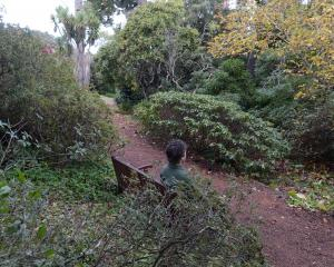 There are many places to take time out at Dunedin Botanic Garden. Photo: Linda Robertson.