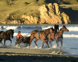 Todd Quate and Brenna Cook exercise racehorses at Waikouaiti Beach. Photo: Stephen Jaquiery.