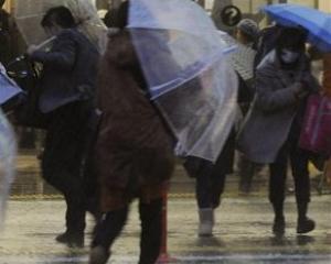 rain_wild_weather.jpg