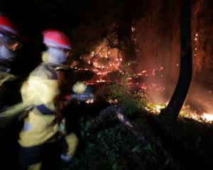 Firefighters spray water to extinguish a forest fire in Castagniers near Nice. Photo: Reuters