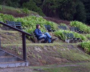 The revamped terrace above the rock garden at Dunedin Botanic Garden. Photo: Peter McIntosh.