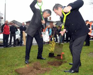 Dunedin Mayor Dave Cull and National list MP Michael Woodhouse plant a totara to mark the start...