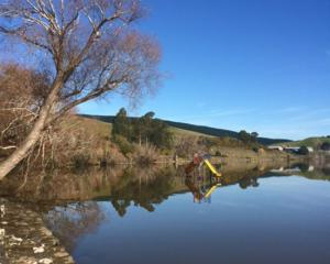 """Jennie McIntosh writes: """"after 24 years in beautiful Waihola, I still wonder at the lovely..."""