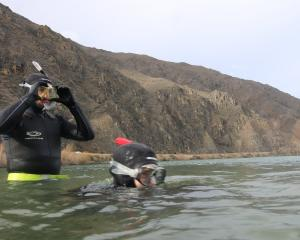 Sam (left) and Amelia Parish take to the chilly waters of Lake Dunstan for freediving practice...