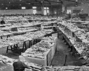 The interior of Brydone Hall, showing the array of bags laid out in consecutive groups of numbers...