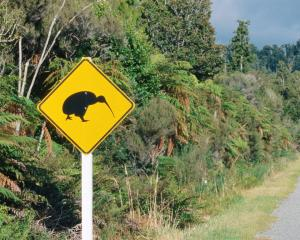 A sign warning of kiwi on a road near Okarito. Photo Getty
