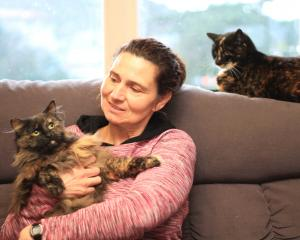 Kate Ferris with two of her cats,  Ash (left) and Storm. They are vaccinated and desexed but not ...