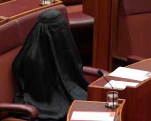 Pauline Hanson. Photo: Twitter