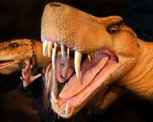 Otago Museum marketing manager Charlotte Neilson  gets in close with a life-like animatronic...