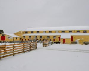 Wilden Station's woolshed in snow in 2014. Photo: supplied.