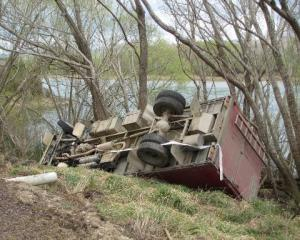 Lucky escape ... The driver and 48 bobby calves avoided injury when this stock truck veered off...