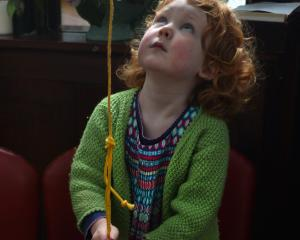 Rosalie Beyer, of Dunedin, rings the Opoho Presbyterian Church bell to welcome royal albatrosses...