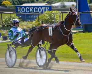 Dexter Dunn, pictured driving Eamon Maguire to win at Invercargill, is on track to register his...