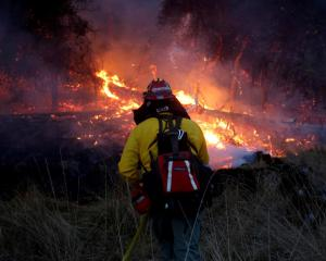 Firefighters battle a blaze near Santa Rosa, California. Photo: Reuters