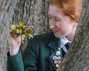 Columba College pupil Corrie Anderson has won a prestigious Royal Society Crest Award for her...