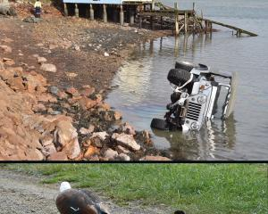 A Jeep ended up in Otago Harbour  after its driver lost control of the vehicle after braking to...