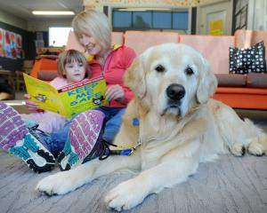 Jonathon Rhodes Kindergarten pupil Zara Hall builds a trusting relationship with Marley the...