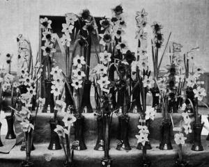 Champion blooms grown by Mrs McLean of Oamaru, shown at the Dunedin Horticultural Society's...