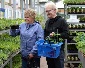 Carol and John Sutherland, of Balclutha, imagine their new garden while shopping at Nichols...