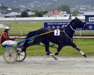 Driver Samantha Ottley produced a brilliant front-running drive to win the Tuapeka Cup with Rocki...