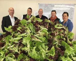 (From left) are Drysdale Hydroponics director Craig MacAlister, Horticulture New Zealand...