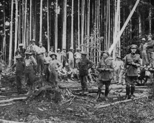 Canadian bushmen attached to the British overseas forces fell timber for military purposes on the...