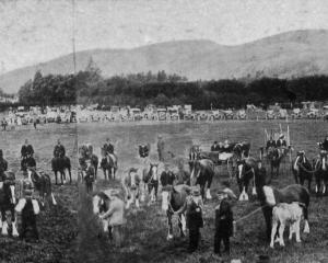 Panorama of the Kelso A. and P. Association's grounds during the seventh annual show on October...