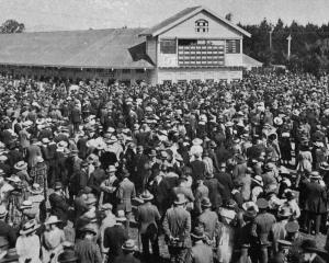 The crowd in front of the totalisator at the New Zealand Metropolitan Trotting Club's spring...