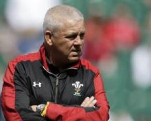 British and Irish Lions coach Warren Gatland.  Photo: file