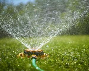 Sprinklers should only be used for a short time in the evenings or early mornings.