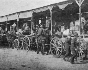 An early morning scene at the New Zealand Army Service Corps ration dump, as wagons load to take...