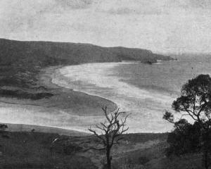The entrance to Hooper's Inlet boat harbour from the slopes of Sandymount, showing Cape Saunders...