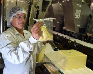 Fonterra Stirling site jack-of-all-trades Jonni de Malmanche takes a sample from a 20kg block of...