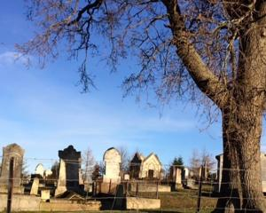 Lawrence cemetery. Photo: Elaine Crawford