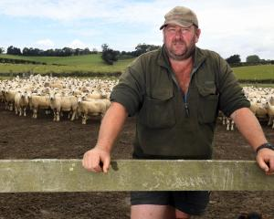 South Otago farmer Ross Clark's business has been severely affected by Mycoplasma bovis. Mr Clark...