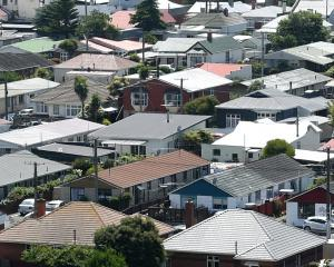 Houses in the suburb of South Dunedin. Photo: Peter McIntosh