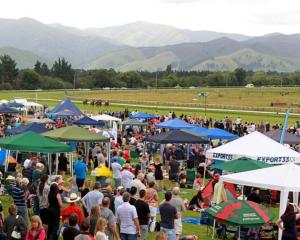 Tauherenikau in the Wairarapa fills up with racing fans every year for the  January 2 meeting....