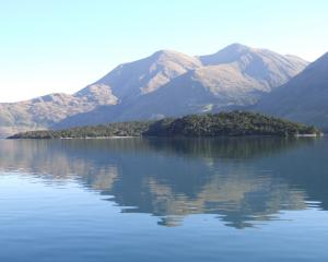 A photo looking at Stevensons Island lies in the Stevensons Arm of Lake Wanaka. Photo: File